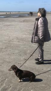 Dackeldame Joy mit Frauchen am Strand